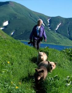 Любопытство медведей