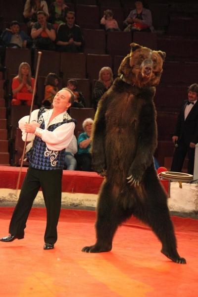 Мифы и правда о цирковых медведях1